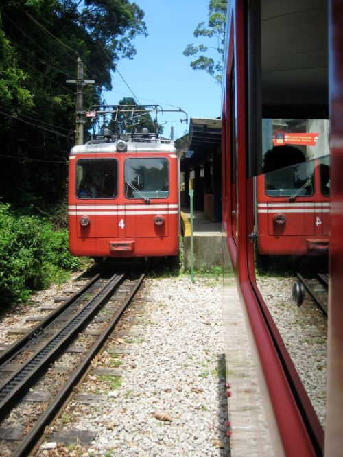 Train through Corcovado's Atlantic forest